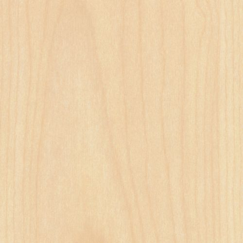 Natural Maple Stain Kitchen Cabinet Door by Allstyle